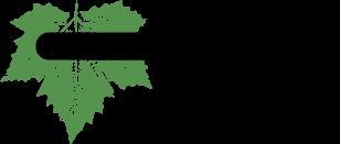 DGTEAM logo